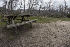 Wooden bench for a picnic, in an oak forest. Photographed with wide angle stock photo