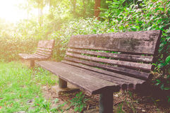 Wooden Bench In Public Park. Wooden Bench Along The Walking Path In Public Park Royalty Free Stock Images