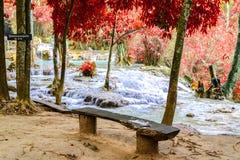 Wooden bench at rainforest waterfall, Tat Kuang Si Waterfall at Luang Prabang, Loas Stock Photos