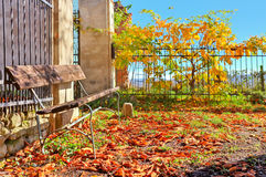 Wooden bench and red leaves covering the ground in Italy. Royalty Free Stock Images