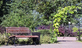 Wooden bench for rest Royalty Free Stock Images