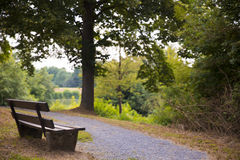 Wooden bench beside the road with a beautiful view of the lake s royalty free stock images