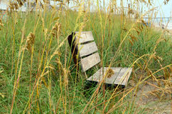 Wooden Bench Sand Dunes Sea Oats Royalty Free Stock Image