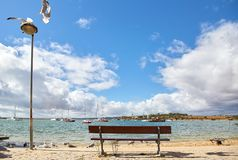 Wooden bench and seagulls. In the Portuguese town Alvor Royalty Free Stock Photography