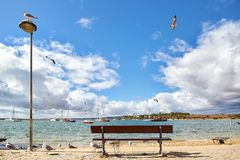 Wooden bench and seagulls. In the Portuguese town Alvor Stock Images
