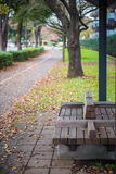 Wooden bench at the sidewalk park forest in autumn Royalty Free Stock Images