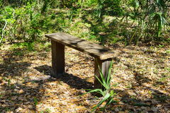A wooden bench sitting in the woods Stock Images