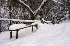 Wooden bench in snowy outdoors. Lovely winter scenery in park Royalty Free Stock Images