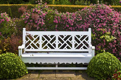 Wooden bench in a spring garden. Royalty Free Stock Photography
