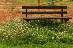 Wooden bench surrounded by vegetation and flowers in a park. In a village of Spain Royalty Free Stock Images
