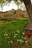 Wooden bench surrounded by vegetation and flowers in a park. In a village of Spain Royalty Free Stock Photo