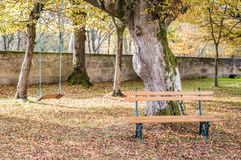 Wooden bench and swing in the autumn garden Royalty Free Stock Images