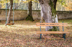 Wooden bench and swing in the autumn garden Stock Images