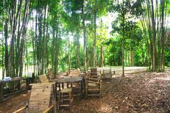 Wooden bench and table in forest. Place for resting for tourists. Natural green forest landscape royalty free stock photography