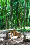 Wooden bench and table in forest. Place for resting for tourists. Natural green forest landscape stock photography