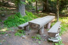 Wooden bench and table for picnic in the forest Royalty Free Stock Photography