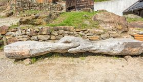 Wooden bench in the tree trunk.  Royalty Free Stock Images