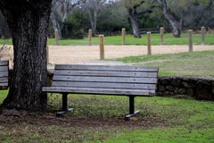 Wooden Bench under a tree at Mission Espada Stock Photo