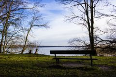 Wooden bench by the water and trees. Wooden bench by the water and dry trees on winter Stock Photos