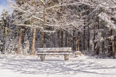 Wooden bench in a winter landscape. With light and shadow Royalty Free Stock Photography