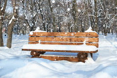 Wooden bench in the winter park. Bright sunny day and snow. Stock Images