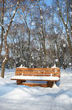 Wooden bench in the winter park. Bright sunny day and snow. Royalty Free Stock Photography