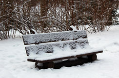 Wooden bench in the winter park Royalty Free Stock Image