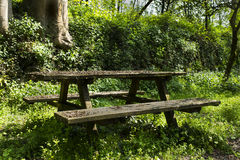 Wooden bench and wooden table Stock Images