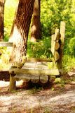Wooden bench. In the woods Stock Photography