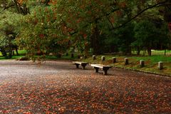Wooden Benches Royalty Free Stock Image
