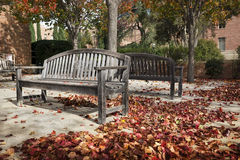 Wooden Benches in Autumn Stock Photography