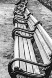 Wooden benches in the city park