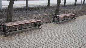 Wooden benches in the city park. Wooden benches in a city park on a path paved with pink concrete tiles stock image