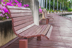 Wooden benches. And flowers in park Royalty Free Stock Photos