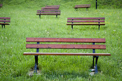 Wooden benches on grass in park Stock Image