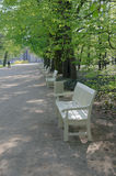 Wooden benches in Lazienki park Stock Photo