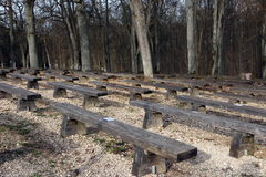 Wooden benches Stock Images