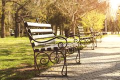Benches. Wooden benches in the park stock photography