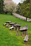 Wooden benches in park. Old wooden benches on green grass in park Royalty Free Stock Photo