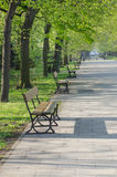 Wooden benches in park Stock Photo