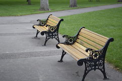 Wooden benches in the park Royalty Free Stock Images