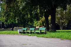 Wooden benches in the park. Empty green wooden benches in the city park Royalty Free Stock Image