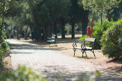 Wooden benches in park Stock Photography