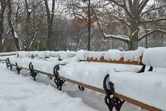 Wooden benches in Rathauspark are covered by fresh white snow in winter morning after snowfall stock photography