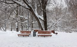 Wooden benches after snow storm Royalty Free Stock Photo