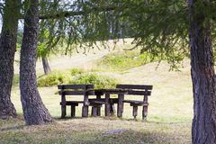 Wooden Benches and Table under Trees Royalty Free Stock Photos