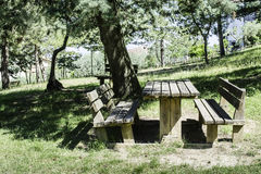 Wooden benches and a table in the woods Stock Photos