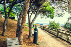 Wooden benches on walkway under the trees in the city park at summer day. City park Parc del Castell. Path, mediterranean nature in spanish town Malgrat de Mar Royalty Free Stock Photo