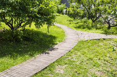 Wooden Bifurcation path Stock Photo