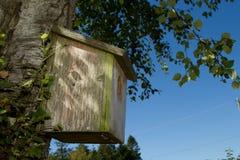 Wooden bird box. Stock Photo